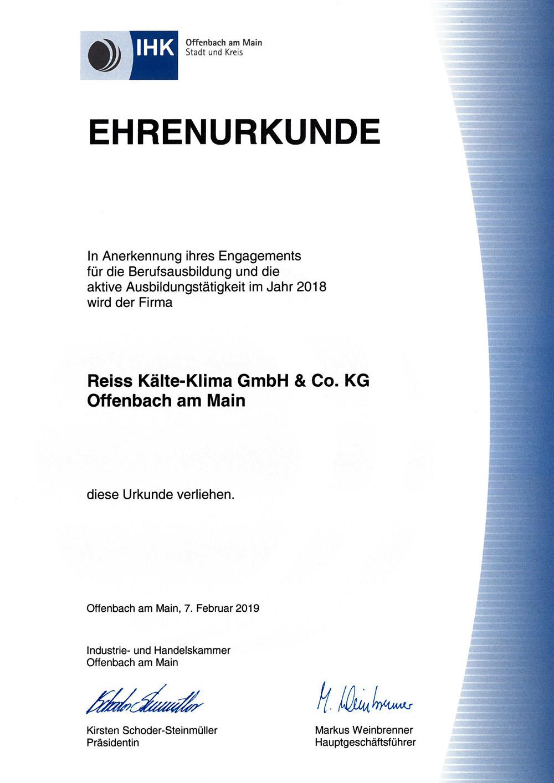 Bachelor's thesis